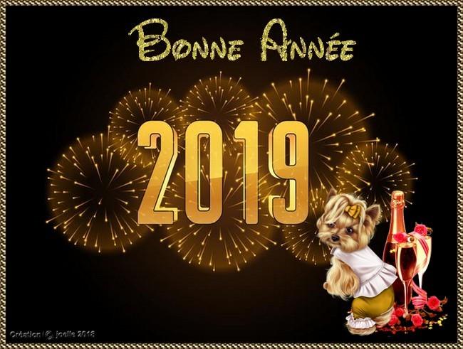 2019 : Les cartes de bons vœux reçues entre nous... 261220182019
